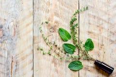 Φρέσκα θερινά χορτάρια - aromatherapy στο ξύλινο υπόβαθρο Στοκ φωτογραφία με δικαίωμα ελεύθερης χρήσης