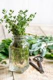Φρέσκα θερινά χορτάρια - aromatherapy στο ξύλινο υπόβαθρο Στοκ Εικόνες