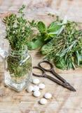 Φρέσκα θερινά χορτάρια - aromatherapy στο ξύλινο υπόβαθρο Στοκ Φωτογραφία