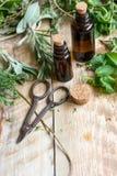 Φρέσκα θερινά χορτάρια - aromatherapy στο ξύλινο υπόβαθρο Στοκ εικόνα με δικαίωμα ελεύθερης χρήσης