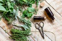 Φρέσκα θερινά χορτάρια - aromatherapy στο ξύλινο υπόβαθρο Στοκ Εικόνα