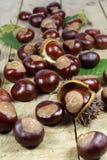 Φρέσκα κάστανα από μια συγκομιδή φθινοπώρου και μια οδοντωτή κρούστα σε έναν παλαιό αγροτικό ξύλινο πίνακα με τα φύλλα Στοκ Εικόνες