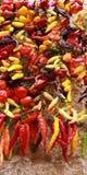 Φρέσκα και ξηρά δεμένα με σπάγγο ζωηρόχρωμα πιπέρια Στοκ εικόνες με δικαίωμα ελεύθερης χρήσης