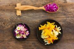 Φρέσκα και ξηρά πέταλα λουλουδιών Στοκ φωτογραφίες με δικαίωμα ελεύθερης χρήσης
