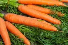 Φρέσκα καρότα στο ξύλινο υπόβαθρο Στοκ Εικόνες