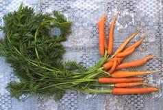 Φρέσκα καρότα στο ουδέτερο υπόβαθρο Στοκ Φωτογραφίες