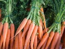 Φρέσκα καρότα Στοκ Φωτογραφίες