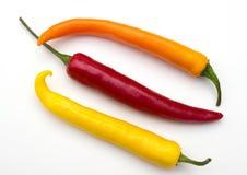 Φρέσκα καυτά πιπέρια τσίλι Στοκ φωτογραφία με δικαίωμα ελεύθερης χρήσης