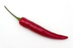 Φρέσκα καυτά πιπέρια τσίλι Στοκ Φωτογραφίες