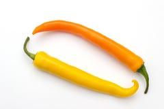 Φρέσκα καυτά πιπέρια τσίλι Στοκ Φωτογραφία