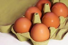 Φρέσκα καφετιά αυγά κοτόπουλου σε ένα χαρτοκιβώτιο σε ένα άσπρο υπόβαθρο στοκ εικόνες