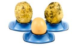 Φρέσκα καφετιά αυγά με τις πατάτες Στοκ εικόνες με δικαίωμα ελεύθερης χρήσης