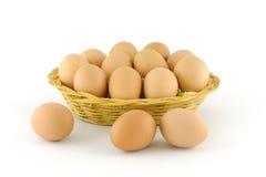 Φρέσκα καφετιά αυγά Στοκ Εικόνες