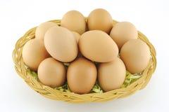 Φρέσκα καφετιά αυγά Στοκ φωτογραφία με δικαίωμα ελεύθερης χρήσης