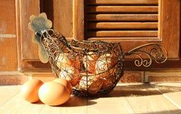 Φρέσκα καφετιά αυγά Στοκ εικόνες με δικαίωμα ελεύθερης χρήσης