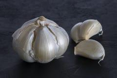 φρέσκα κεφάλια τρία σκόρδου βολβών Στοκ εικόνα με δικαίωμα ελεύθερης χρήσης