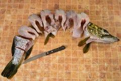 Φρέσκα κομμάτια των ψαριών, λούτσοι Στοκ φωτογραφία με δικαίωμα ελεύθερης χρήσης