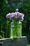 Φρέσκα κρεμμύδια ανθοδεσμών με τα πορφυρά λουλούδια στο σαφές γυαλί στο ξύλο Στοκ φωτογραφίες με δικαίωμα ελεύθερης χρήσης