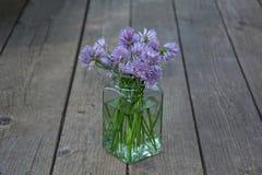 Φρέσκα κρεμμύδια με τα πορφυρά λουλούδια στο σαφές γυαλί Στοκ Φωτογραφία