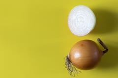 Φρέσκα κρεμμύδια Στοκ Φωτογραφίες