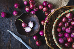 Φρέσκα κρεμμύδια Στοκ Εικόνες