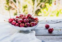 Φρέσκα κόκκινα κεράσια σε ένα πιάτο, σε ένα υπόβαθρο του πράσινου κήπου, Στοκ φωτογραφίες με δικαίωμα ελεύθερης χρήσης