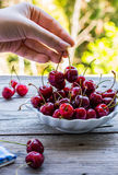 Φρέσκα κόκκινα κεράσια σε ένα πιάτο, σε ένα υπόβαθρο του πράσινου κήπου, Στοκ φωτογραφία με δικαίωμα ελεύθερης χρήσης
