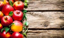 Φρέσκα κόκκινα μήλα με τα πράσινα φύλλα στον ξύλινο πίνακα Στοκ Εικόνες