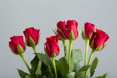 Φρέσκα κόκκινα τριαντάφυλλα ανθοδεσμών Στοκ Φωτογραφία