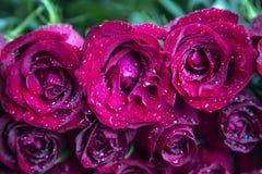 Φρέσκα κόκκινα τριαντάφυλλα σε μια ανθοδέσμη ως υπόβαθρο στοκ φωτογραφίες με δικαίωμα ελεύθερης χρήσης