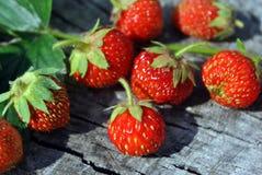 Φρέσκα κόκκινα φυσικά φράουλες και φύλλο στο παλαιό ραγισμένο ξύλινο υπόβαθρο Στοκ φωτογραφίες με δικαίωμα ελεύθερης χρήσης