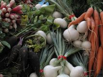 Φρέσκα λαχανικά αγοράς αγροτών στοκ εικόνες με δικαίωμα ελεύθερης χρήσης