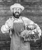 Φρέσκα λαχανικά αγροτικής παράδοσης E Φρέσκα οργανικά λαχανικά στη λυγαριά στοκ φωτογραφία με δικαίωμα ελεύθερης χρήσης
