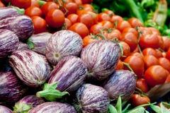 Φρέσκα λαχανικά για την υγιή διατροφή: Ντομάτες, μελιτζάνες Στοκ φωτογραφία με δικαίωμα ελεύθερης χρήσης
