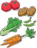φρέσκα λαχανικά κήπων διανυσματική απεικόνιση