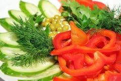 φρέσκα λαχανικά πιάτων Στοκ Εικόνα
