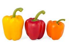 φρέσκα λαχανικά πιπεριών Στοκ Φωτογραφία