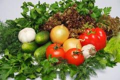 φρέσκα λαχανικά πρασινάδω&nu Στοκ φωτογραφία με δικαίωμα ελεύθερης χρήσης