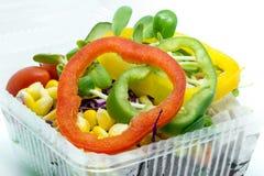 Φρέσκα λαχανικά σαλάτας και γλυκός ηδονοβλεψίας στο άσπρο υπόβαθρο Στοκ εικόνα με δικαίωμα ελεύθερης χρήσης