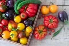 Φρέσκα λαχανικά σε μια ξύλινη επιφάνεια Ντομάτες, πιπέρια, αγγούρια και μελιτζάνες Αγροτικό ύφος Στοκ Εικόνα