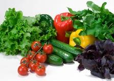 φρέσκα λαχανικά Στοκ Εικόνα