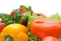 φρέσκα λαχανικά Στοκ εικόνες με δικαίωμα ελεύθερης χρήσης