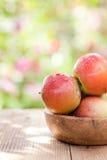 Φρέσκα μήλα Στοκ Εικόνες