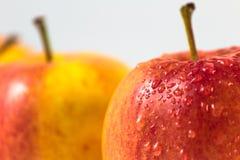φρέσκα μήλα Στοκ φωτογραφίες με δικαίωμα ελεύθερης χρήσης