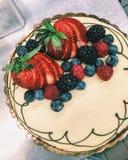 Φρέσκα μούρα και cheesecake κρέμας Στοκ Εικόνες