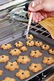 Φρέσκα μπισκότα   Στοκ εικόνα με δικαίωμα ελεύθερης χρήσης