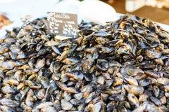 Φρέσκα μύδια στην αγορά αγροτών ψαριών στην Προβηγκία Στοκ Εικόνες