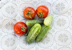 Φρέσκα ντομάτες και αγγούρι Στοκ Εικόνες
