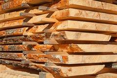 Φρέσκα ξύλινα στηρίγματα Στοκ εικόνα με δικαίωμα ελεύθερης χρήσης