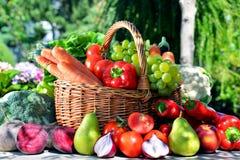 Φρέσκα οργανικά λαχανικά και φρούτα στον κήπο Στοκ Εικόνες